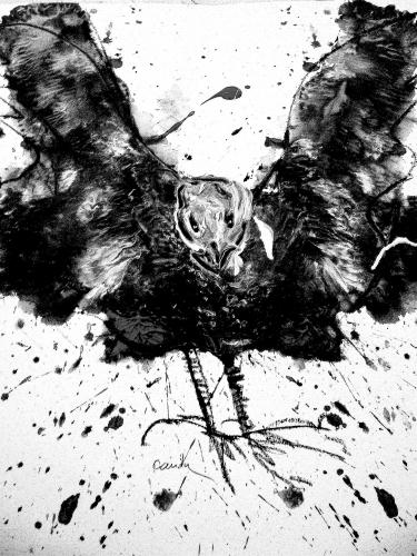 fuite d'ailes -poème 2.JPG