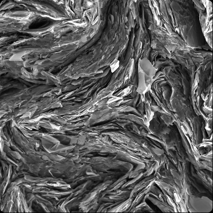John Terlet, University of Adelaide Graphite sur papier au microscope. .png